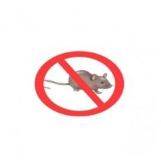 20 лесни начина за прогонване на мишки и плъхове