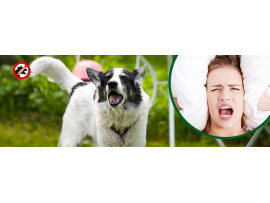 GARDIGO Германия - Електронен уред против кучешки лай GARDIGO на най-добра цена