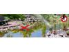 Соларен уред за прогонване на птици, котки, кучета и диви животни с вода, Gardigo за 100 кв.м (2) на най-добра цена