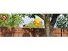 КОМПЛЕКТ - 2 бр. Плашило ЖЪЛТО ОКО за Гълъби, Врабчета, Скорци, Кълвачи, Врани, Косове, Гъски, Патици, Чайки и др., диаметър 40 см. (2) на най-добра цена