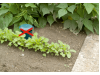 Капан за голи и градински охлюви 2 комплекта (4 бр.) 9 см широк /10 см висок Gardigo (5) на най-добра цена