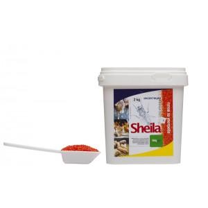 Инсектицид за директно унищожаване на МУХИ - ШЕЙЛА - 2 кг на най-добра цена