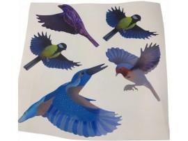 Защитни мрежи и Плашила прогонващи Птици - Цветни стикери за защита на прозорци/стъкла от сблъсък на птици - 5 бр. на най-добра цена