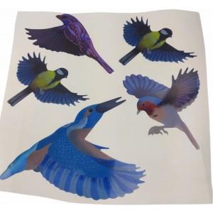 Цветни стикери за защита на прозорци/стъкла от сблъсък на птици - 5 бр. на най-добра цена