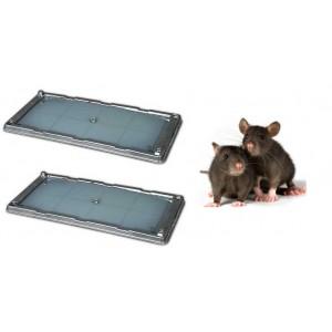 Комплект (2 бр.) КАПАН - ТЕРМИНАТОР с лепило за плъхове, мишки и насекоми - 26 х 13 см. на най-добра цена