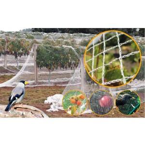 Мрежа защитна срещу птици (гълъби, косове, скорци и др.) - 4 м х 10 м на най-добра цена
