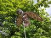 Плашило БУХАЛ с размах на крилете 110 см, прогонващо птици (Гълъби, Скорци, Врабчета, Пчелояди) и гризачи (мишки, плъхове, зайци, катерици) (4) на най-добра цена