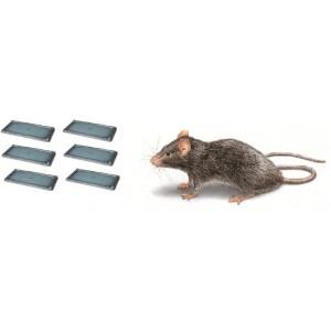 3 комплекта (6 бр.) КАПАН - ТЕРМИНАТОР с лепило за плъхове - 13 х 26 см. на най-добра цена