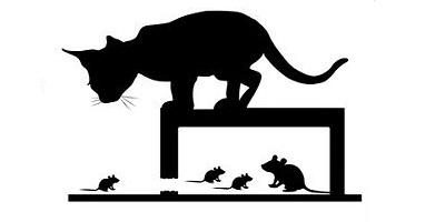 Борба с мишки - капани, уреди, репеленти на супер цени.