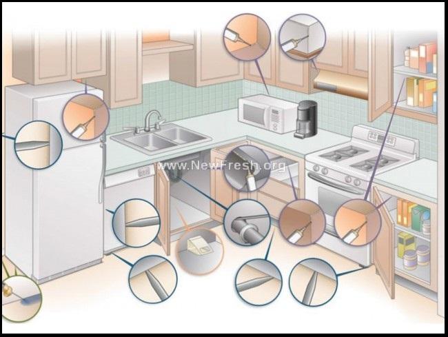 Къде се поставя гела за хлебарки за защита на дома