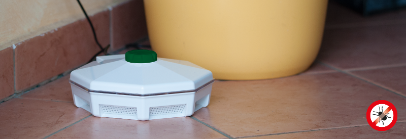 Капан за хлебарки - електронен, дискретен и на цена от вносител | NewFresh.org