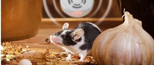 Отблъскване на мишки (2)