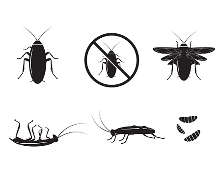Уреди срещу хлебарки - край на размножаването им в дома!