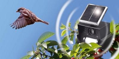 Птицегон най-доброто срещу птици