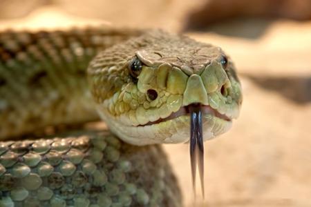 Уред против змии 3